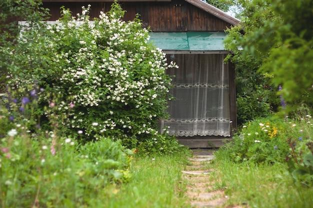 목조 마을 집의 현관은 큰 재스민 덤불 옆에 레이스 커튼으로 덮여 있습니다. 잔디 경로는 왼쪽 꽃의 현관으로 이어집니다.