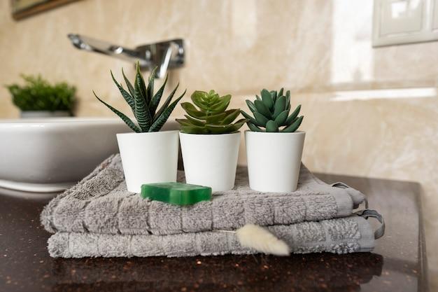 Суккуленты в горшках стоят на хлопковых полотенцах, украшающих интерьер современной ванной комнаты.