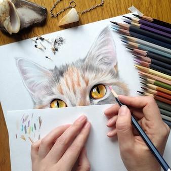 Процесс рисования портрета кошки. реалистичный рисунок кота цветными карандашами. рабочее место художника. художник за работой