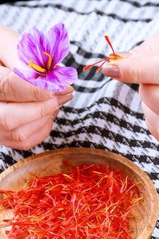 꽃의 나머지 부분에서 사프란 가닥을 분리하는 과정. 요리, 미용 또는 의약품에 사용하기 전에 건조용 사프란 실을 준비합니다.