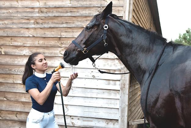馬をホースからの水で洗い、競技の準備をするプロセス。レクリエーション