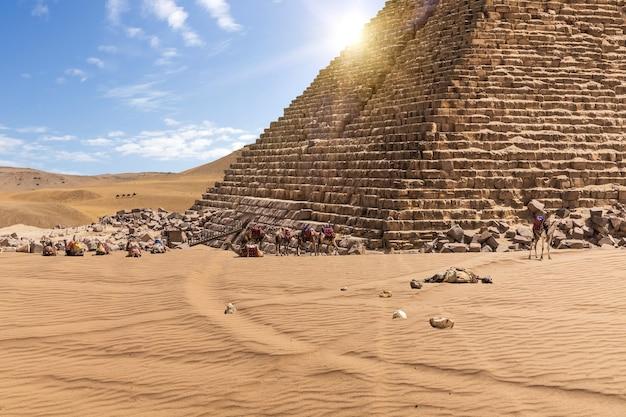 メンカウラー王のピラミッドとエジプトのギザのラクダ。