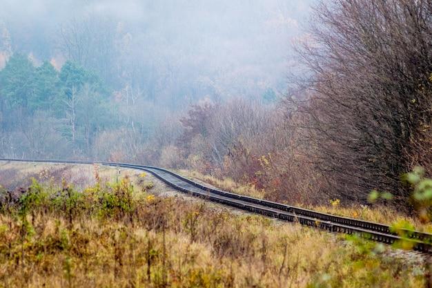 鉄道は森の中を走っています。線路近くの秋の森の霧のかかった朝