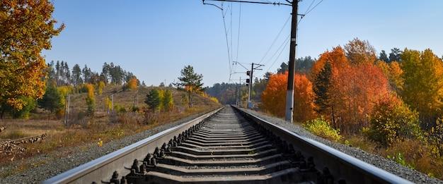 Железная дорога проходит через красивый осенний лес с разноцветными деревьями.