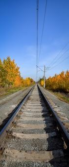 鉄道は色とりどりの木々のある美しい秋の森を通り抜けます。