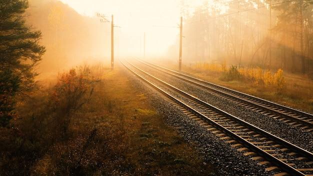 鉄道は秋の森の中を走っています。朝の太陽の光が霧をカットします。