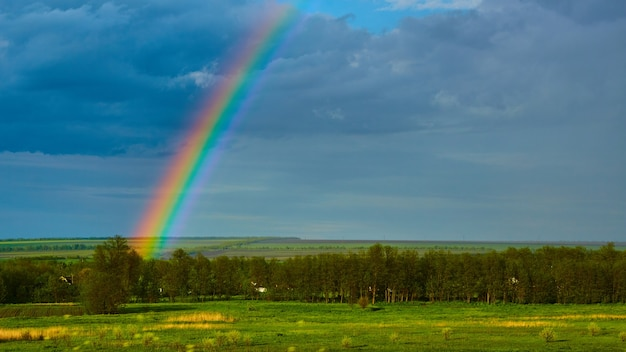 雷雨の後のフィールド上の虹