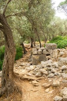 セディール島の古代カリアンの都市の遺跡。トルコ、ムーラ