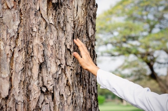 The right hand of a woman is touching a tree.