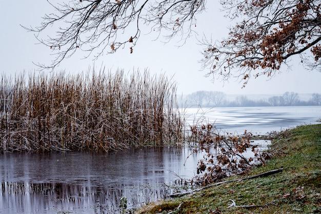 川岸は初雪に覆われています。川の近くの森で晩秋