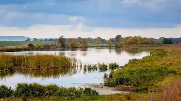 川はスゲと川の上の曇り空で生い茂っていました