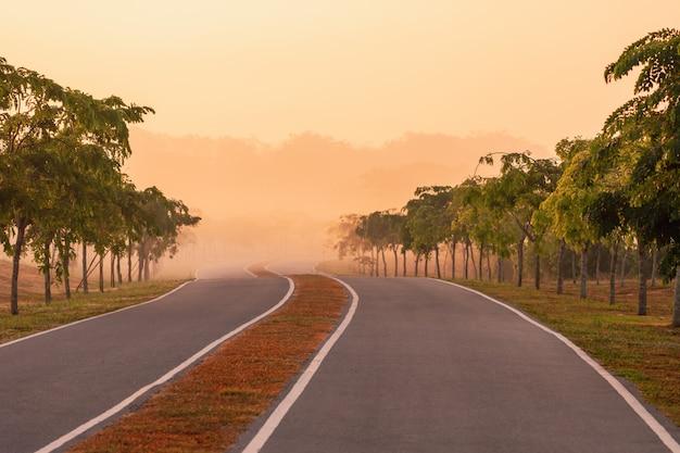 暖かい朝の道は自然の中で日光とともに曲がります
