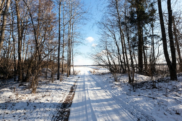 Дорога зимой засыпана снегом.