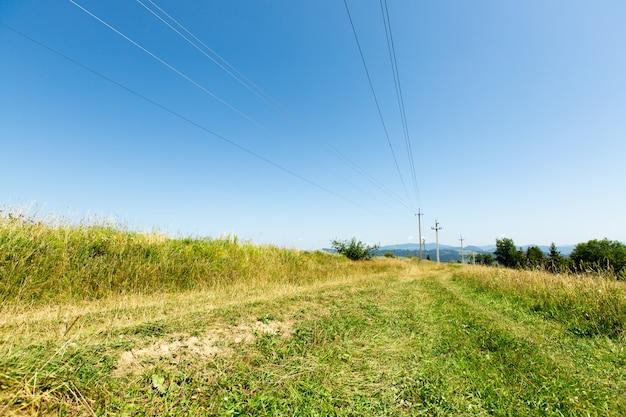 길은 키가 큰 풀 사이입니다. 전선이 달린 기둥.