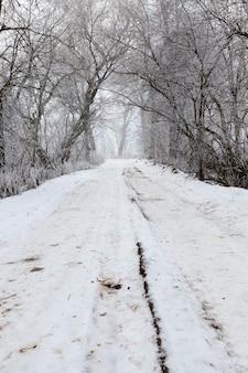 겨울 시즌에는 도로가 눈으로 덮여 있습니다.