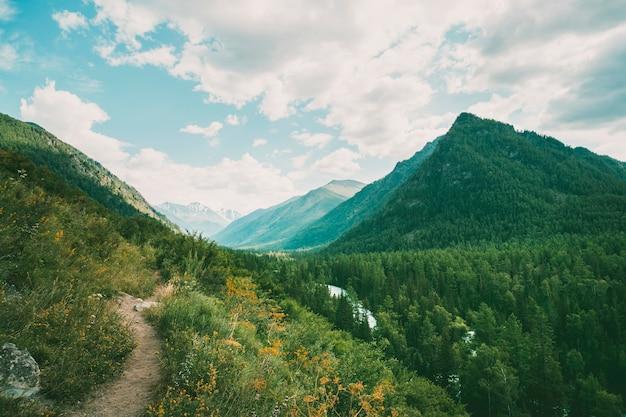 Дорога через луг в горы к горному алтаю.