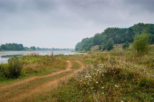 川沿いの森への道。秋の風景、曇り