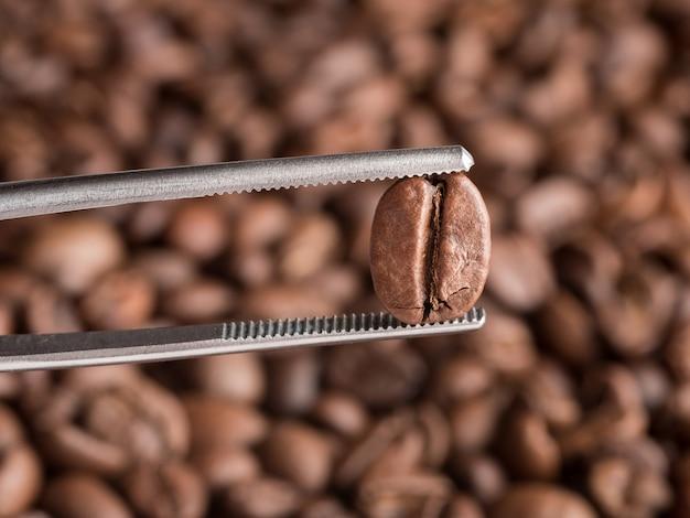 Обжаренные кофейные зерна держат в щипцах. макрофотография.