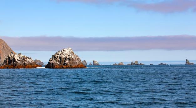太平洋の岩。海景。セレクティブフォーカス