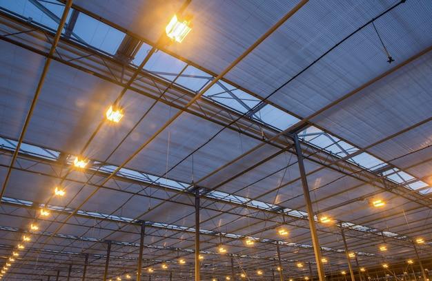 Крыша теплицы с горящим осветительным оборудованием, вечерние часы