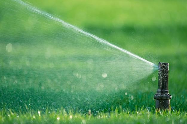 Вращающаяся насадка автоматической системы полива поливает сочную молодую зеленую газонную траву. выборочный фокус.