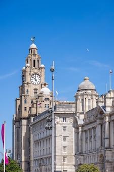 Здание royal liver с часовой башней в ливерпуле, англия