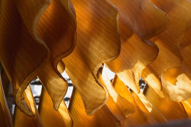 Резиновый лист подвешен на вешалке. производство резины, процесс выпечки.