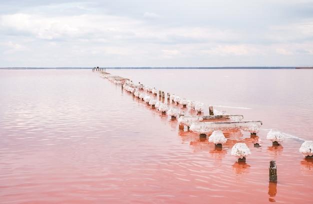 Соленое розовое озеро. старые деревянные столбы остались от добычи соли на берегу соленого озера.
