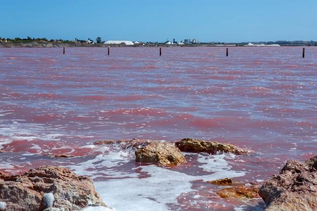 Соленый берег лагуны салада-де-торревьеха, испания. вода выглядит розовой из-за особых водорослей, которые растут с высоким содержанием соли.
