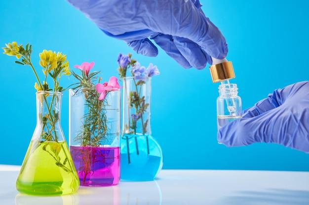과학자의 손에는 화장품 한 병, 벽에 식물이 담긴 시험관이 있습니다. 향수 및 향수 연구 개념.