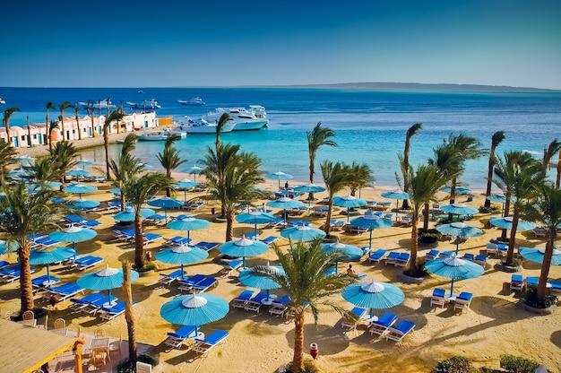 エジプトの海の景色とビーチ
