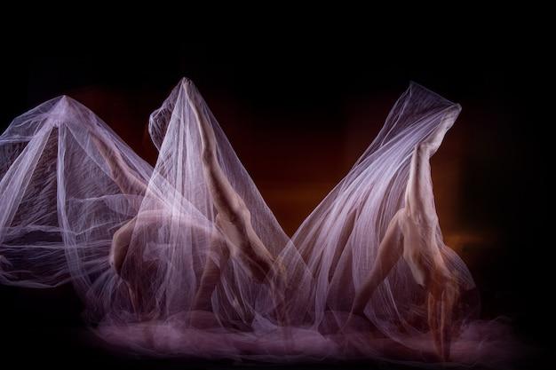 아름다운 발레리나의 감각적이고 감성적 인 춤