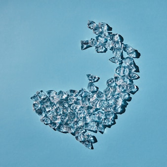 물고기의 모양은 투명한 인공 얼음으로 이루어져 있습니다.