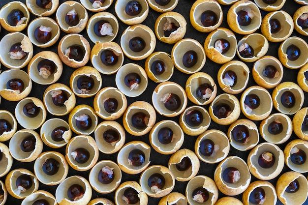 태국 과일 용안의 껍질과 뼈. longan 껍질 껍질과 곡물 배경입니다. 태국의 이국적인 과일, 클로즈업