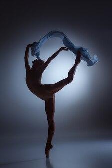 紺色の背景にベールと踊る美しいバレリーナのシルエット