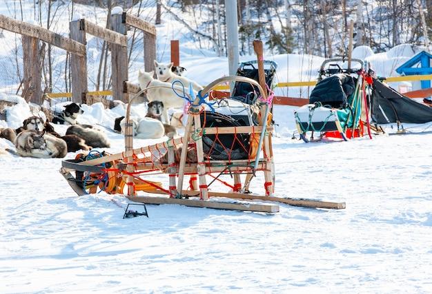 Сани, используемые на леднике nothing man для собачьих упряжек