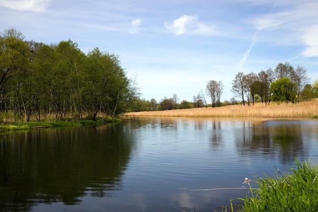 봄 시즌에 촬영 된 작은 호수