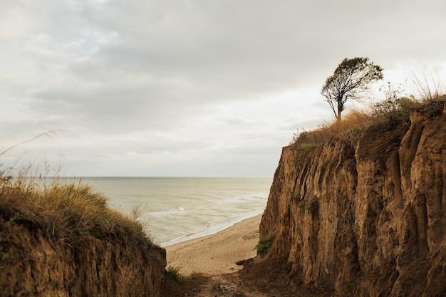 黒海の美しい砂浜のビーチへの壮大な道。