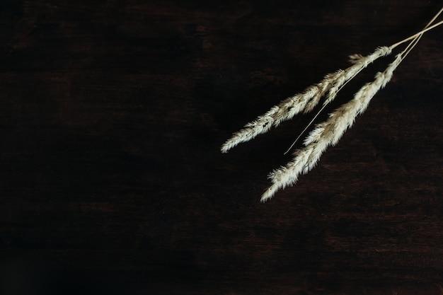 小穂は茶色の木製のテーブルの上にあります。暗い木製の壁に小穂と穀物。テキスト用のスペース