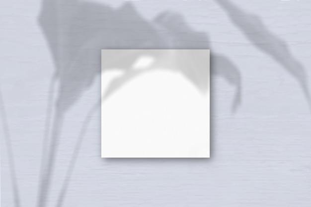 Квадратный лист белой фактурной бумаги на сером фоне стены. наложение мокапа с тенями растений. естественный свет отбрасывает тени от экзотического растения. плоский вид, вид сверху. горизонтальная ориентация.