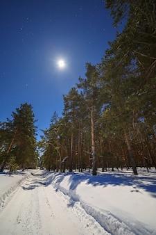 밤에 하늘의 별과 보름달. 침엽수 림에 깊은 눈이 겨울 도로.