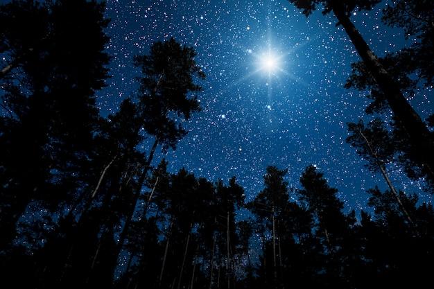Звезда сияет на голубом ночном небе