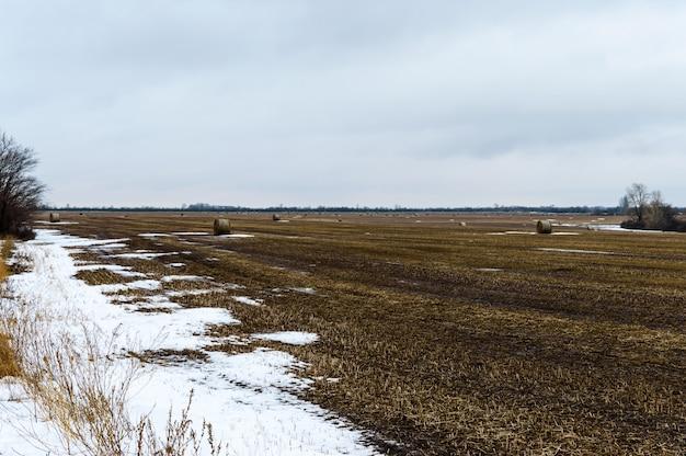 穀物収穫後に畑に残されたわらは、密なロールの形成を形成しました