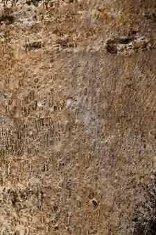 昆虫や害虫から木材を保護するための樹皮の構造
