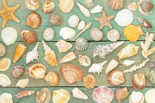 木製のテーブルに貝殻と夏の背景
