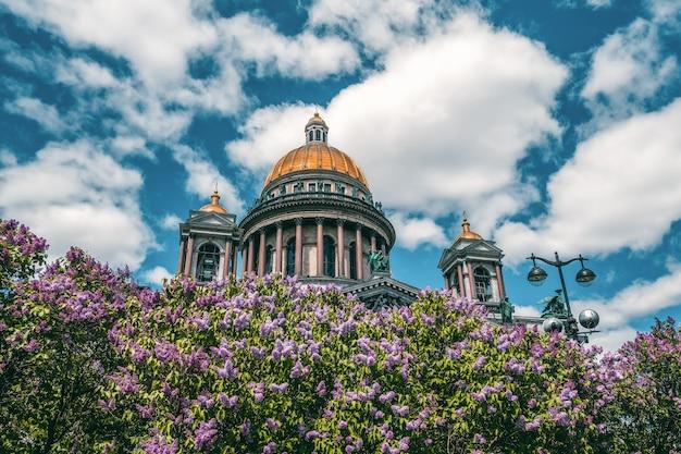 ライラック色の花の聖イサアク大聖堂、ロシアのサンクトペテルブルクの象徴的なランドマークのある夏の風光明媚な
