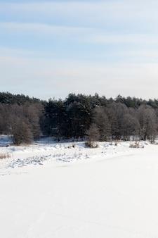 冬に凍った氷と雪に覆われた川の水面