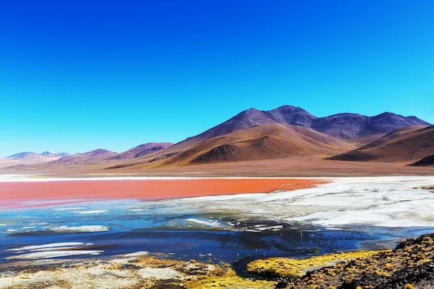 남미의 초현실적 인 풍경. 볼리비아의 고원 altiplano에 다채로운 라구나 colorada.
