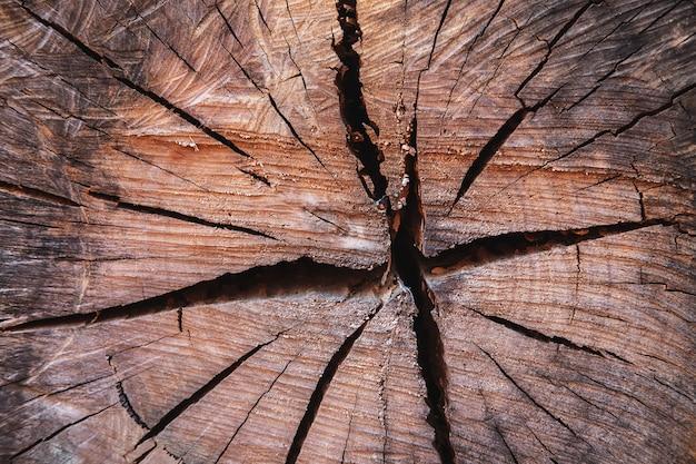 切り木のテーブルテクスチャ Premium写真