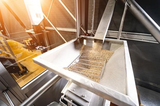 밀에서 맥아 종자를 분쇄하는 기술 과정